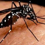 Risk of Dengue in Xayaboury on the Rise