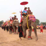 Xayaboury Prepares for Annual Elephant Festival