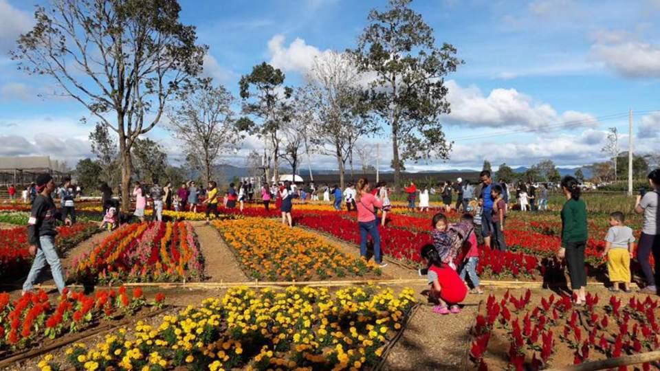 Mon Ta Champa Lao Gardens