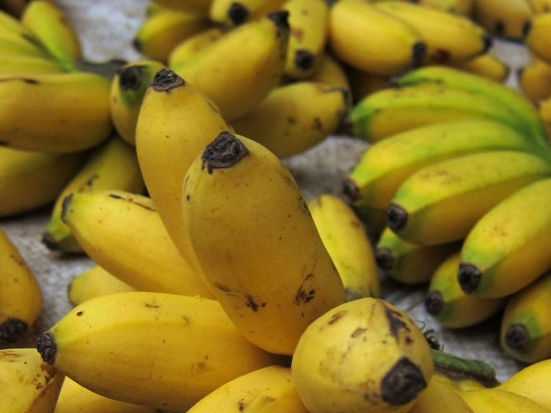 Laos banana exports uncertain