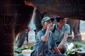 Changing Times For Elephants, Mahout Handlers in Laos (Laotian Times)